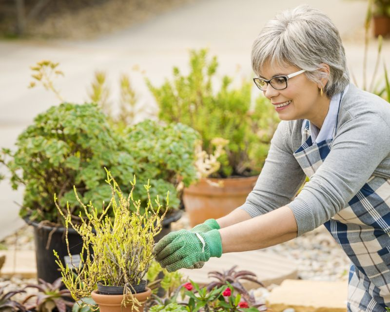 the-happiness-and-health-benefits-of-gardening_1585004301208
