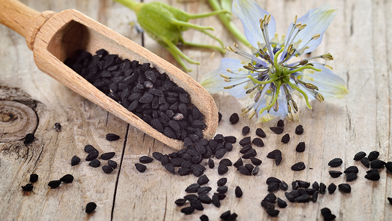 how-to-grow-nigella_1551154945218