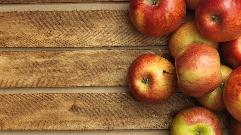 how-to-grow-apple_1551154996024