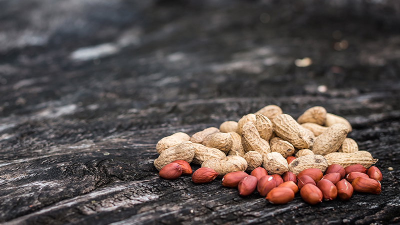how-to-grow-peanuts_1551154995656