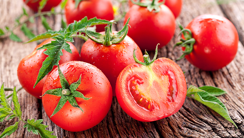 how-to-grow-tomatoes_1551160547175
