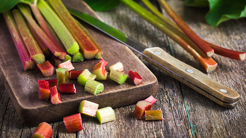 how-to-grow-rhubarb_1551160515869
