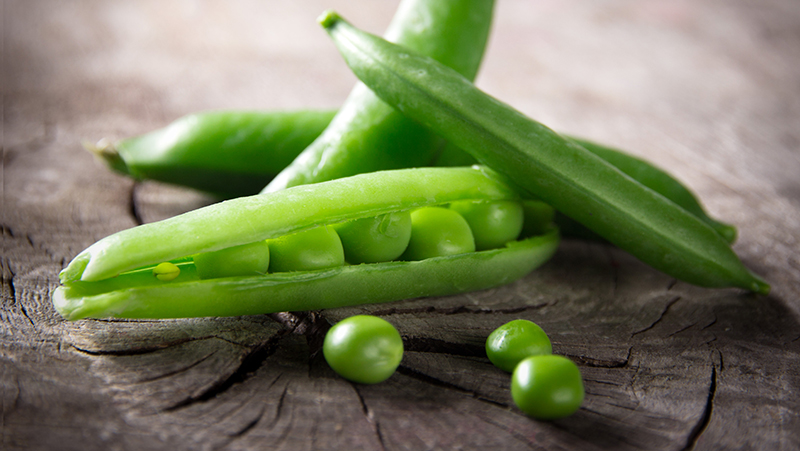 how-to-grow-peas_1551160523804