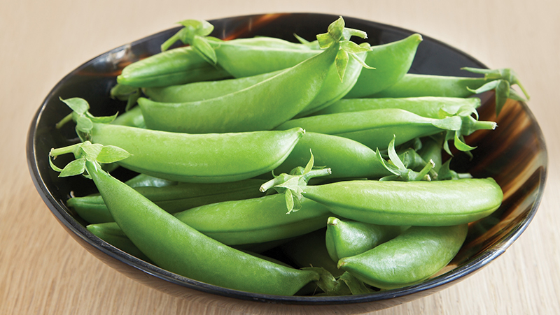 how-to-grow-peas_1551160535759
